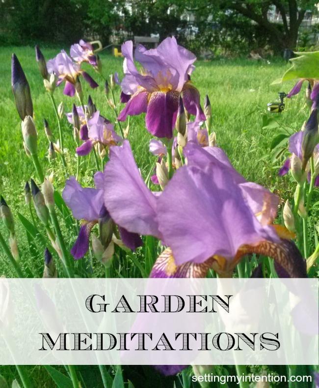 Garden-Meditations