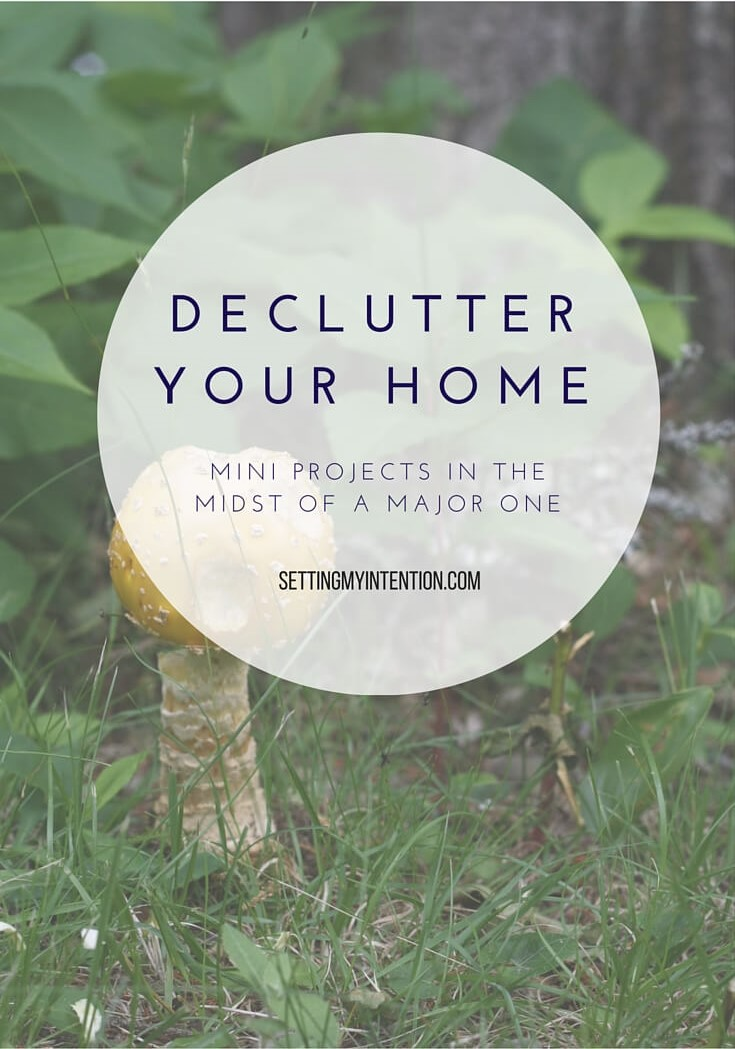 declutter your home mini project kitchen counter