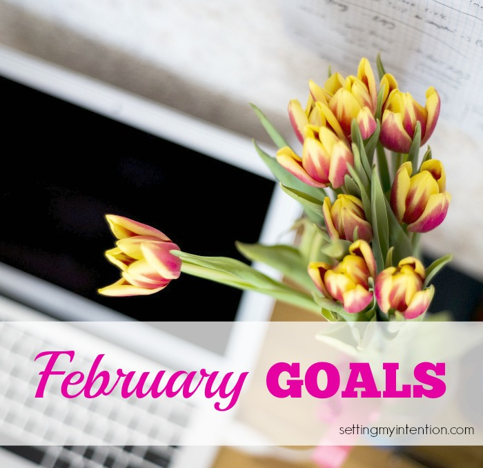 Monthly Goals February