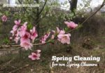 Spring Cleaning in Steps: Putting the Winter Gear Away