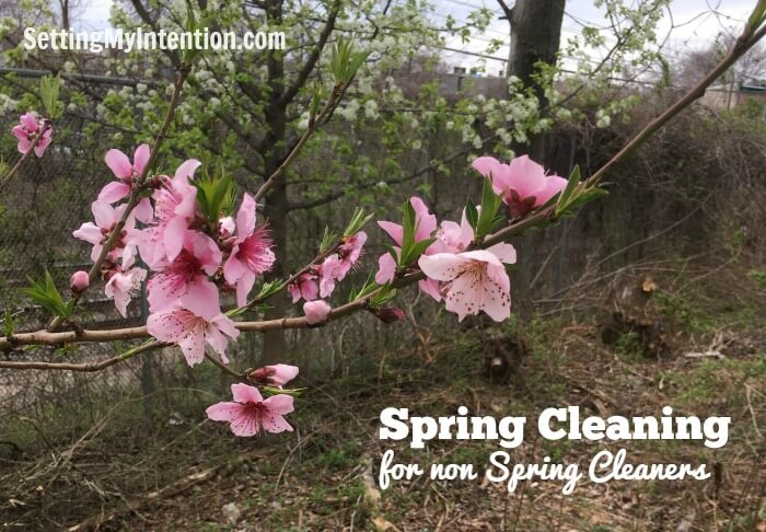 Spring Cleaning in Steps