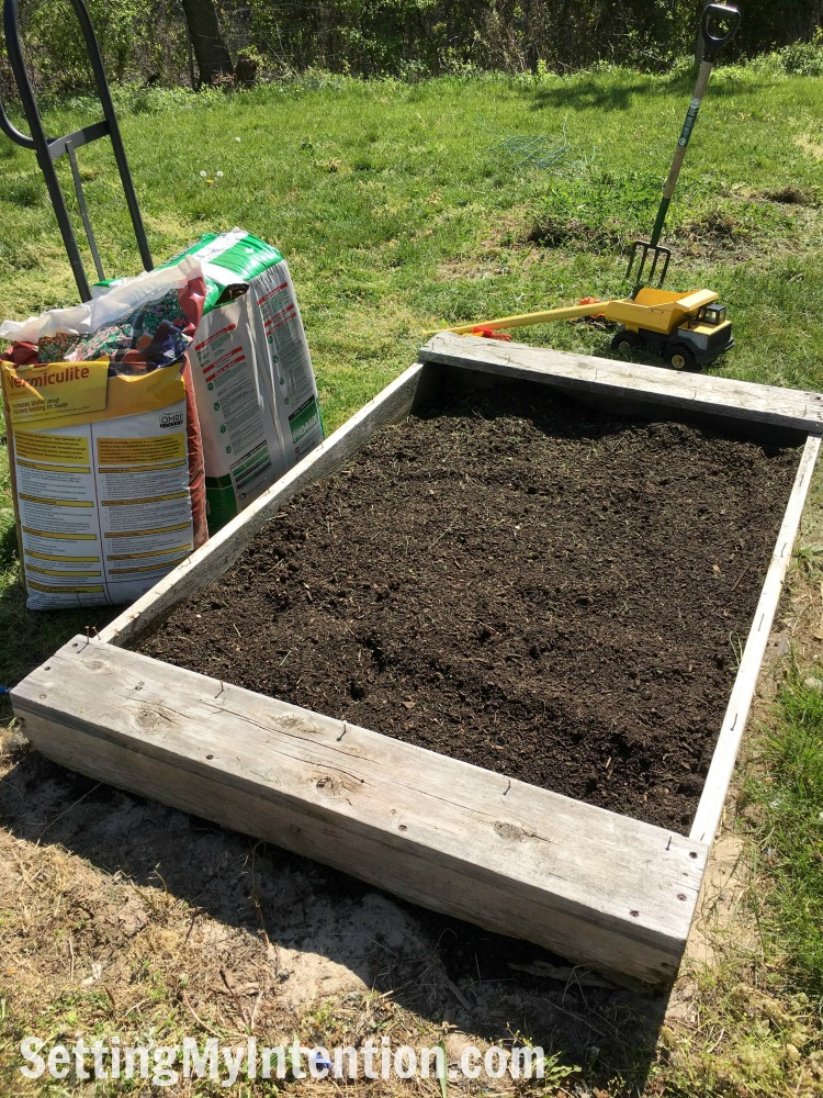vegetable garden box with compost