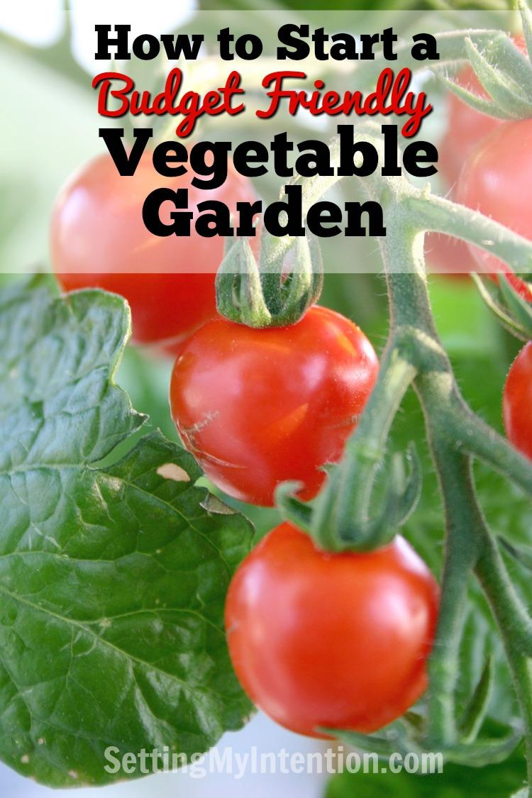 how to start a budget vegetable garden